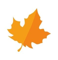 Autumn dry leaf vector