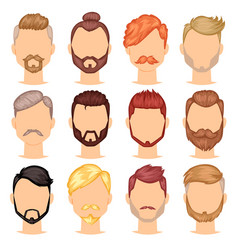 beards portraite bearded man with male vector image