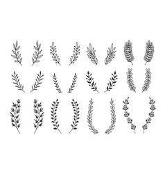 Branches wreaths set laurel ornaments vector