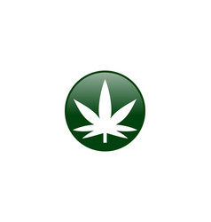 Cannabis marijuana leaf logo vector