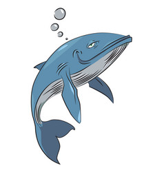 Cartoon image of happy whale vector