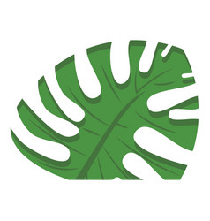 cutted monstera leaf icon cartoon style vector image