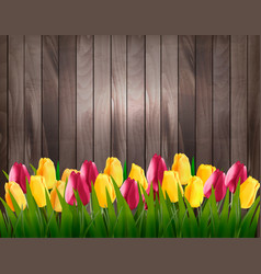 Nature spring background with colorful tulips on vector