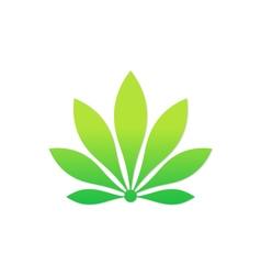 beauty green flower eco botany logo vector image vector image