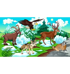 MOUNTAIN Animals vector image vector image