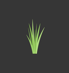 bunch of green grass flat icon vector image vector image