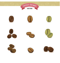 Collection of coffee beans isolated on white vector
