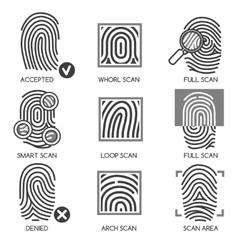 Fingerprint identification icons vector image