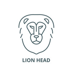lion head line icon linear concept vector image