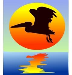 Pelican on sunset vector