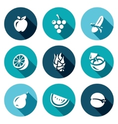 Set of Fruits Icons Apple Grape Banana vector