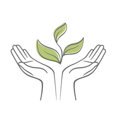 sprout in a hand sign environmental protection vector image