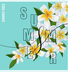 summertime floral poster tropical plumeria flowers vector image