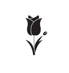 tulip black concept icon tulip flat vector image
