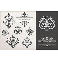 Vintage Damask Ornaments vector image