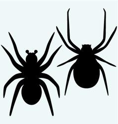 Set spider icon vector image