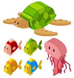 3d design for fish and turtle vector image