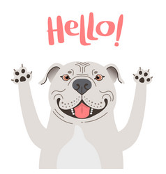greeting card with cute pitbul dog sweet american vector image