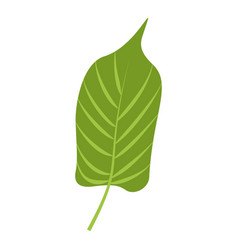 jungle leaf icon cartoon style vector image