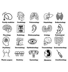medical sciences set vector image