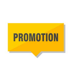 promotion price tag vector image