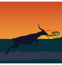 African savanna an evening landscape vector