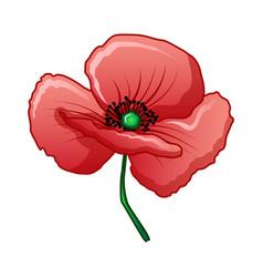 Bud poppy icon cartoon style vector