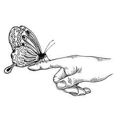 butterfly on finger engraving vector image