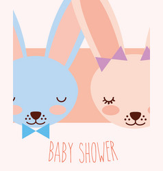 cute faces blue and pink rabbits baby shower card vector image