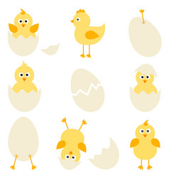 Set of cartoon chickens for easter design vector