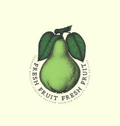 Vintage pear label vector