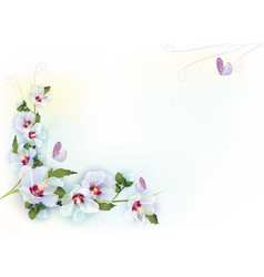 delicate floral background vector image vector image