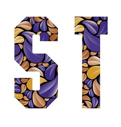 Beautiful floral alphabet letters S and T vector image vector image