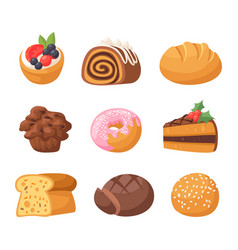 cookie cakes tasty snack delicious chocolate vector image