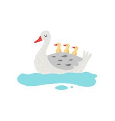 beautiful white goose cartoon character swimming vector image