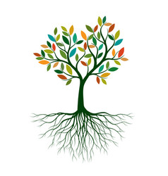Color tree with roots vector