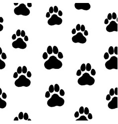 Drawn Tiger Paw Vector Images 24