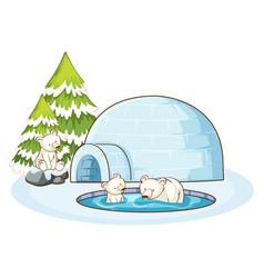 polar bears and igloo in snow vector image