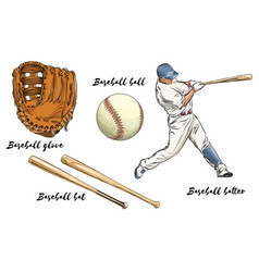 Set baseball in color isolated on white vector