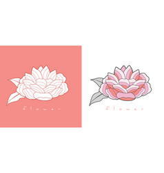 Stylized vintage retro flower natural style brand vector