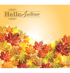 Vintage autumn leaves transparency background vector image