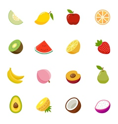 Fruit full color flat design icon vector image vector image