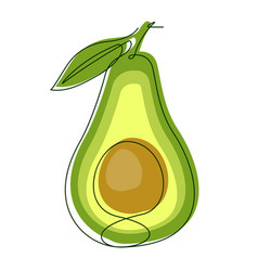 Avocado continuous line vector