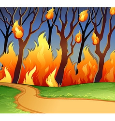 Wild fire in the forest vector