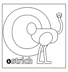 Ostrich letter O coloring page vector image vector image