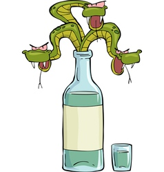 snake in the bottle vector image vector image