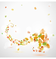 Autumn abstract background with leaves vector image