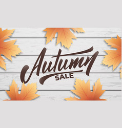 autumn sale autumn layout design with wooden vector image