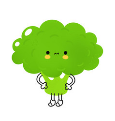Cute funny broccoli vegetable with face vector
