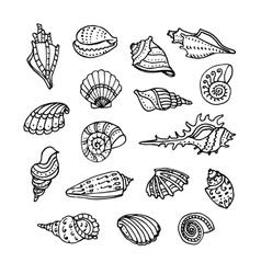 doodle set seashells vector image